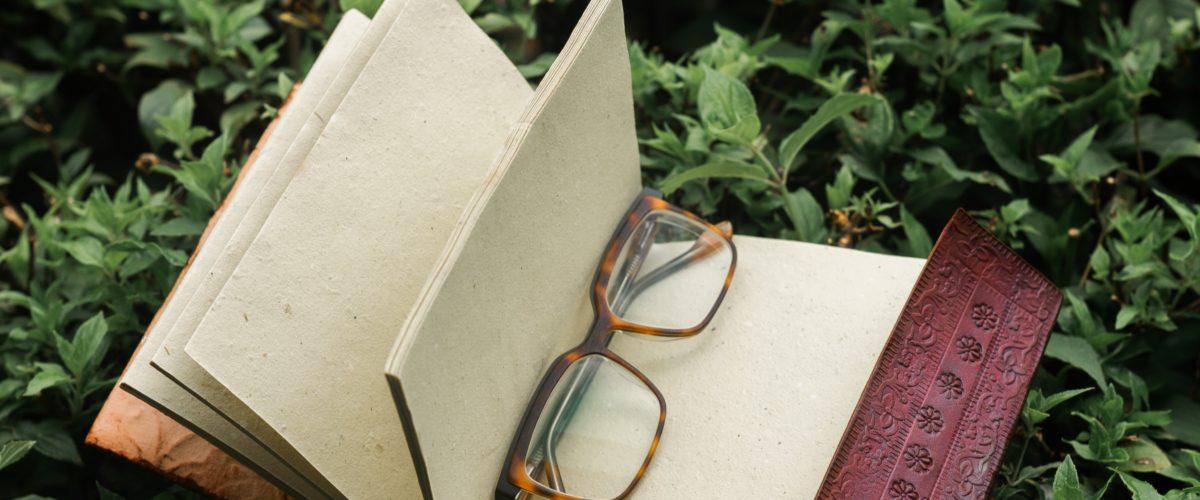Schreibübung 66 – Durch die Augen der Anderen